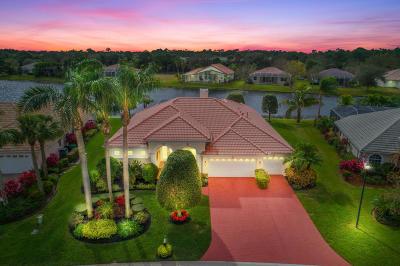 Port Saint Lucie Single Family Home For Sale: 1719 SW Mockingbird Drive
