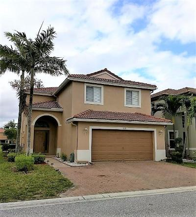 Martin County, Palm Beach County Single Family Home For Sale: 2138 Little Torch Street