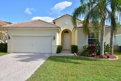Martin County Single Family Home For Sale: 1991 NW Marsh Rabbit Lane