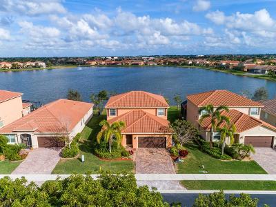 Wellington Single Family Home For Sale: 3460 Princeton Drive
