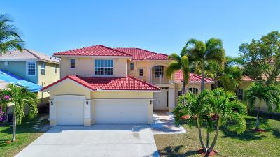 Lake Worth Single Family Home For Sale: 3419 Harness Circle
