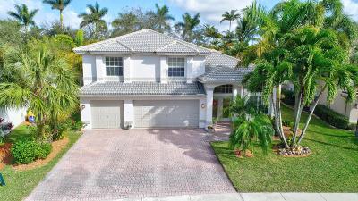 Wellington Single Family Home For Sale: 4034 Bahia Isle Circle