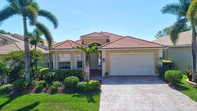 Lake Worth Single Family Home Contingent: 9832 Chantilly Point Lane
