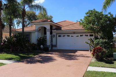 Lake Worth Single Family Home For Sale: 6106 Harbour Greens Dr