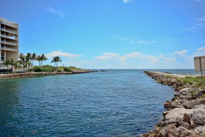 Tierra Del Mar, Tierra Del Mar Condo, Tierra Del Mar Condo South, Tierra Del Mar South Condo For Sale: 1111 S Ocean Boulevard #215