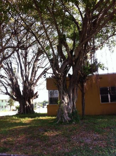 West Palm Beach Multi Family Home For Sale: 541 29th Street