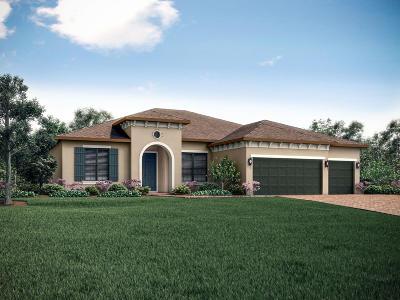 Vero Beach Single Family Home For Sale: 6246 Arcadia Square