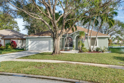 Boynton Beach Single Family Home For Sale: 6446 Terra Rosa Circle