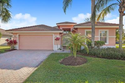 Boynton Beach Single Family Home For Sale: 8240 Marsala Way