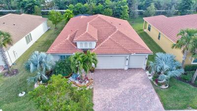 Delray Beach Single Family Home For Sale: 9434 Isles Cay Drive