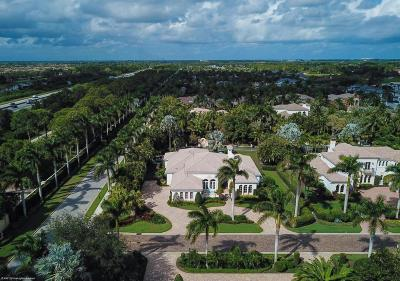 Palm Beach Gardens Single Family Home For Sale: 11731 Valeros Court