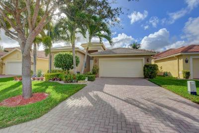 Boynton Beach Single Family Home For Sale: 6986 Watertown Drive