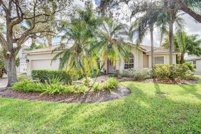 Boca Raton Single Family Home For Sale: 21587 Halstead Drive