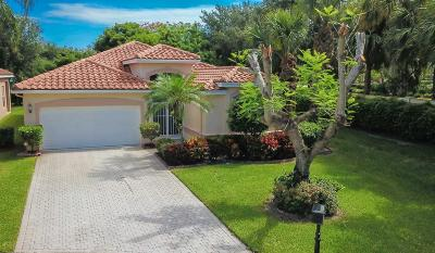 Boynton Beach Single Family Home For Sale: 7529 Caprio Drive
