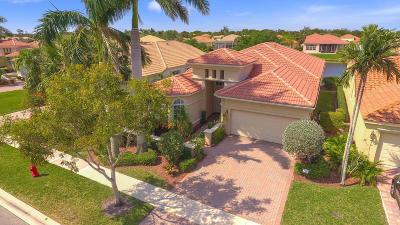 Wellington Single Family Home For Sale: 8911 Via Prestigio E