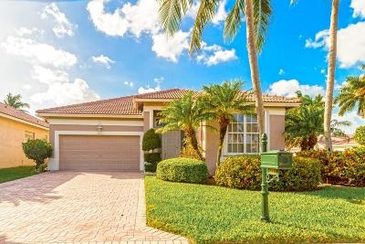 Boynton Beach Single Family Home For Sale: 8811 Sandown Way