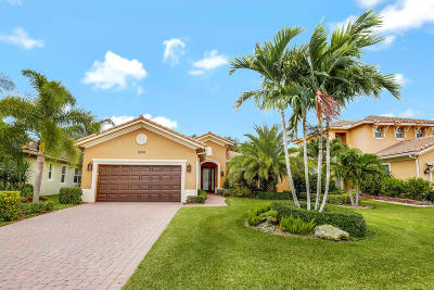 Palm Beach Gardens Single Family Home For Sale: 12185 Aviles Circle