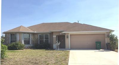Port Saint Lucie, Saint Lucie West Single Family Home For Sale: 4209 SW Baird Street