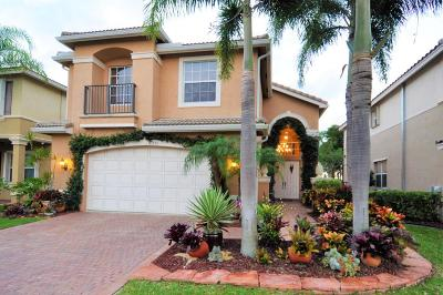 Boynton Beach Single Family Home For Sale: 11555 Rock Lake Terrace