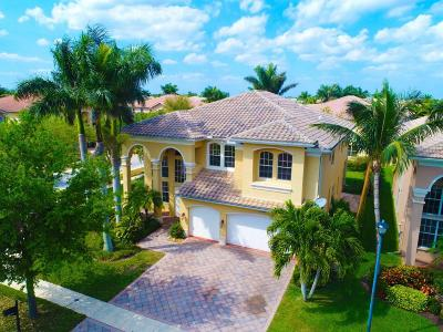 Boynton Beach Single Family Home For Sale: 11030 Misty Ridge Way