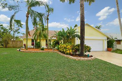 Boca Raton Single Family Home For Sale: 9304 Neptunes Basin Court