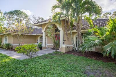 Loxahatchee Single Family Home For Sale: 2559 Palm Deer Drive