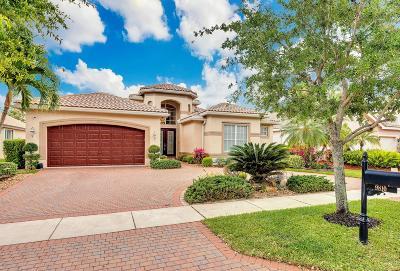 Delray Beach Single Family Home For Sale: 9810 Napoli Woods Lane