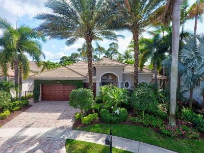 Palm Beach Gardens Single Family Home For Sale: 240 Montant Drive