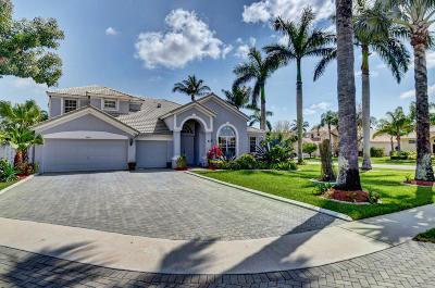 Boynton Beach Single Family Home For Sale: 8892 Livingston Way