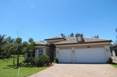Boynton Beach Single Family Home For Sale: 8170 Pyramid Peak Lane