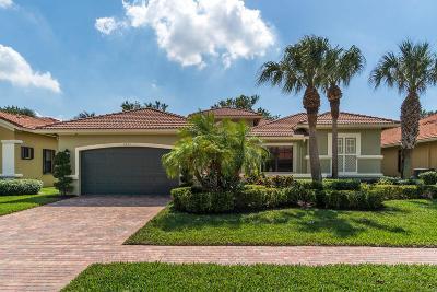 Boynton Beach Single Family Home For Sale: 6953 Antinori Lane