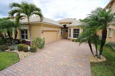 Boynton Beach Single Family Home For Sale: 7205 Veneto Drive