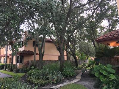 Fort Lauderdale Rental For Rent: 240 NE 17 Court #702