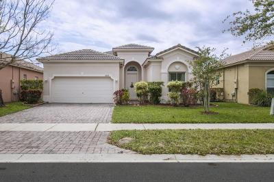 Fort Pierce Single Family Home For Sale: 6009 Spring Lake Terrace