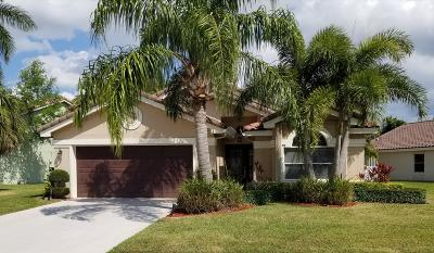Boynton Beach Single Family Home For Sale: 8621 Tourmaline Boulevard