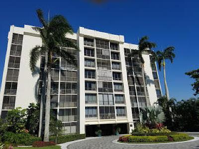 Boca Raton Condo For Sale: 6797 Willow Wood Drive #6082