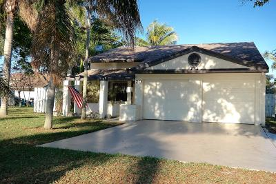 Boynton Beach Single Family Home For Sale: 20 Paxford Lane