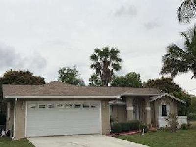 Port Saint Lucie Single Family Home For Sale: 6745 NW Daffodil Lane
