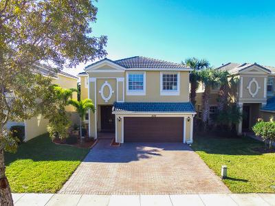 Wellington Single Family Home For Sale: 2591 Sawyer Terrace