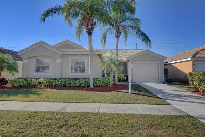 Boca Raton Single Family Home For Sale: 9640 Tavernier Drive