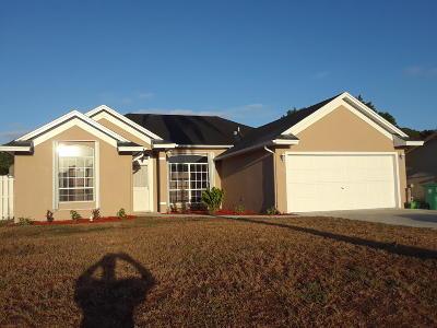 Port Saint Lucie Single Family Home For Sale: 165 SE Crosspoint Drive
