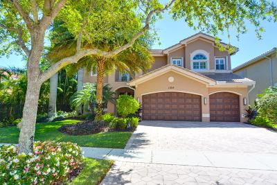 Boynton Beach Single Family Home For Sale: 11214 Misty Ridge Way