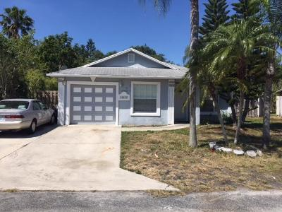 Boynton Beach Single Family Home For Sale: 10043 Boynton Place Circle