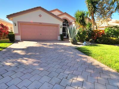 Boynton Beach Single Family Home For Sale: 6576 Bayhill Terrace