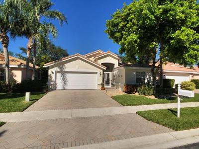 Boynton Beach Single Family Home For Sale: 12067 Tevere Drive