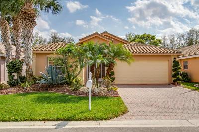 Boynton Beach Single Family Home For Sale: 7710 Caprio Drive