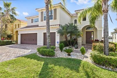 Wellington Single Family Home For Sale: 3459 Vanderbilt Drive
