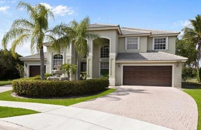 Boca Raton Single Family Home For Sale: 12709 Torbay Drive