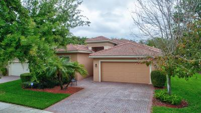 Boynton Beach Single Family Home For Sale: 6842 Watertown Drive