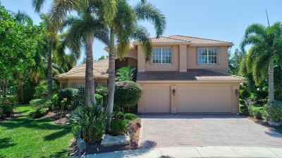 Lake Worth Single Family Home For Sale: 7946 Sunburst Terrace